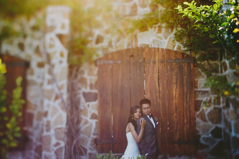Jacuzzi_Family_Vineyard_Sun_and_Life_Photography_Sonoma_Wedding_015