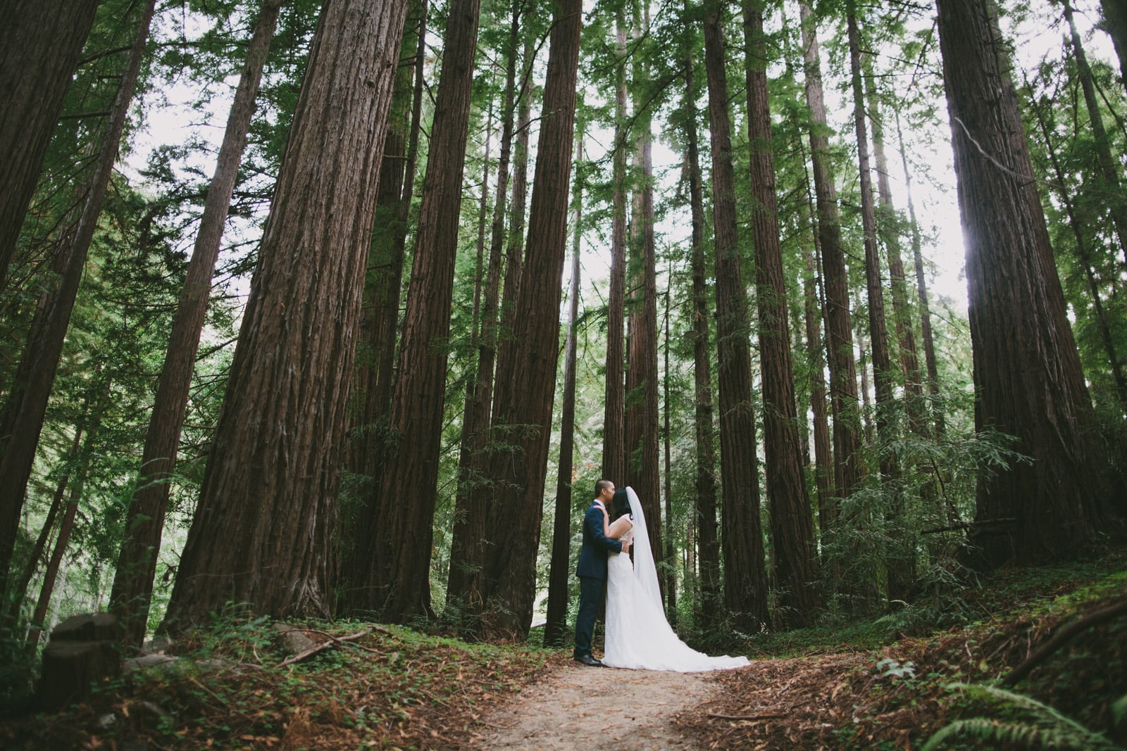 Glen_Oaks_Big_Sur_Wedding_027