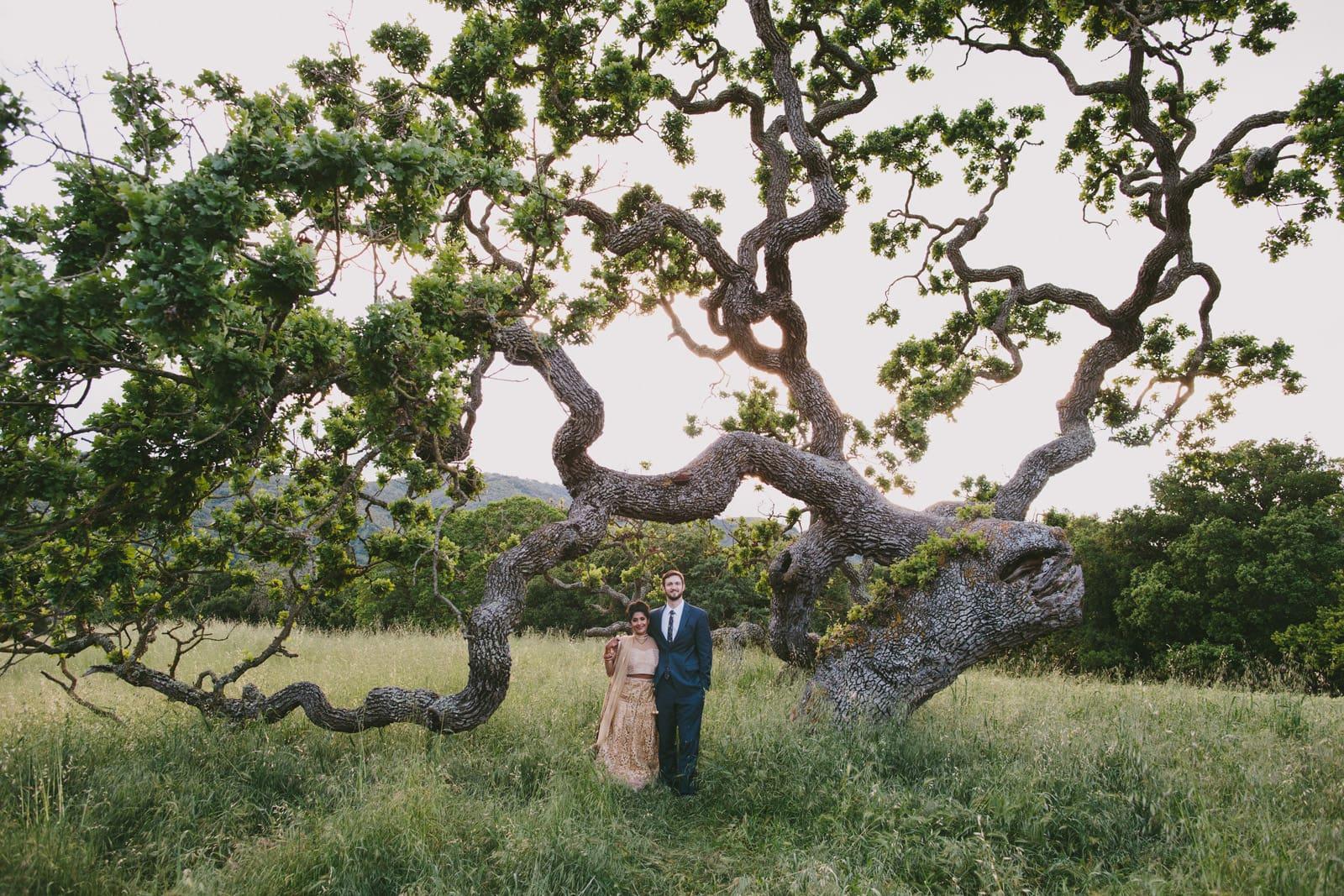 Holman_Ranch_Wedding_Indian_Wedding_054